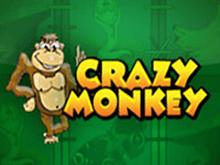 Играть в Вулкане Удачи в аппарат Crazy Monkey